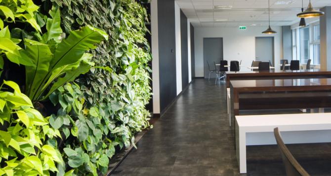 Hoe groen wilt u uw kantoor hebben?